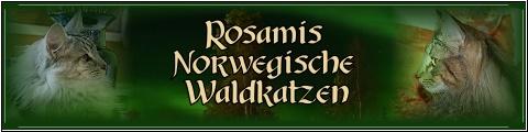 Banner Rosamis